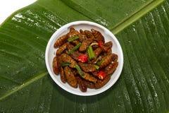 Gebraden eetbare insecten op witte plaat en groen blad royalty-vrije stock afbeeldingen