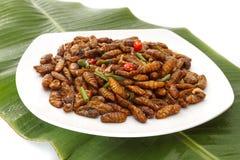 Gebraden eetbare insecten op witte plaat en groen blad royalty-vrije stock afbeelding