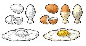 Gebraden ei en gebroken shell De uitstekende illustratie van de kleurengravure Stock Foto's