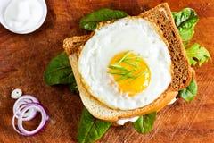 Gebraden ei op een toost met bladeren Royalty-vrije Stock Foto's