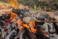 Gebraden gerechtbacon op een staak Bacongebraden gerecht op brand Vet gebraden gerecht in het platteland Het kamperen in het bos royalty-vrije stock afbeelding