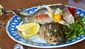 Gebraden gevulde vissen op een schotel feestelijk menu Stock Afbeelding