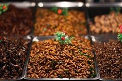 Gebraden insecten Royalty-vrije Stock Afbeelding