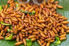 Gebraden insecten knapperige zijderups stock fotografie