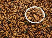 Gebraden insecten, Thais voedsel stock afbeelding