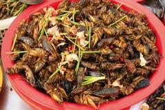 Gebraden insecten voor verkoop, Kambodja stock afbeelding