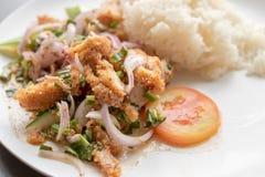 Gebraden kippen kruidige salade met kruidenrijst Royalty-vrije Stock Afbeeldingen