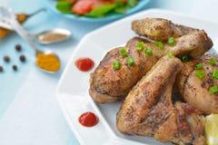 Gebraden kippenvleugel, been en tomatensaus dicht omhoog Royalty-vrije Stock Foto
