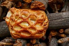 Gebraden pasteitje met kwark op droog brandhout stock foto