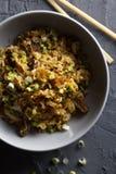 Gebraden rijst met rundvlees Stock Afbeelding