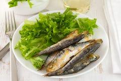 Gebraden sardine met sla stock afbeelding