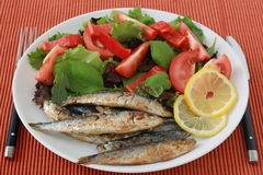 Gebraden sardines met salade Royalty-vrije Stock Foto's