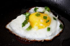 Gebraden smakelijk helder geel ei op een zwart rooster Het horizontale formaat van het fotovoedsel stock foto