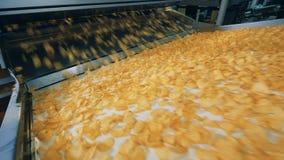 Gebraden spaanders die op een bewegende lijn krijgen bij een voedselinstallatie stock video