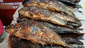Gebraden vissen bij de markt Royalty-vrije Stock Fotografie