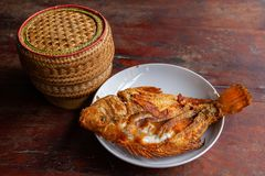 Gebraden vissen en bamboe kleverige rijstdoos stock foto's