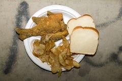 Gebraden vissen met aardappels en brood op plaat Royalty-vrije Stock Foto's
