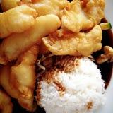Gebraden vissen met rijst Royalty-vrije Stock Afbeeldingen