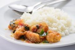 Gebraden vissen met Spaanse peperssaus Stock Afbeelding