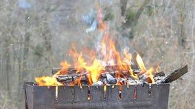 Gebrand brandhout in de grill Brandende steenkool in een brand De hitte in de open haard Picknick in de winter stock footage