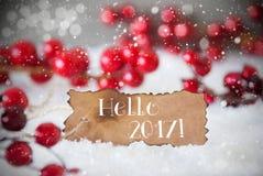 Gebrand Etiket, Sneeuw, Sneeuwvlokken, Tekst Hello 2017 Stock Afbeeldingen