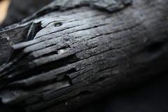 Gebrand Hout zwart hout van de brand Ringen op hout as Hout op steenkool wordt gebrand die stock foto