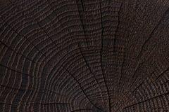 Gebrande houten textuur Donkere houten achtergrond Sluit omhoog royalty-vrije stock foto's