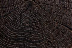 Gebrande houten textuur Donkere houten achtergrond Sluit omhoog stock foto's