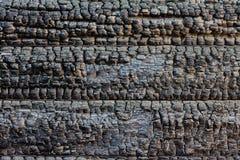 Gebrande houtmuur stock afbeelding