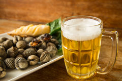 Gebrande kokkel en koud bier Royalty-vrije Stock Fotografie