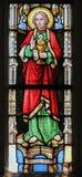Gebrandschilderd glas - Heilige John de Evangelist Royalty-vrije Stock Foto