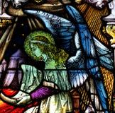 Gebrandschilderd glasengel Royalty-vrije Stock Foto's