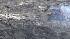 Gebrannter Wald und Feld nach verheerendem Feuer, schwarzer Boden, Asche, Rauch, gef?hrliches Entwurfswetter, ?kologische Katastr stock video