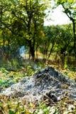 Gebranntes Feuer im Garten stockbilder