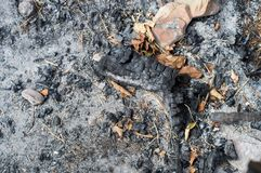 Gebranntes Gras, gebrannter Boden Lizenzfreies Stockfoto