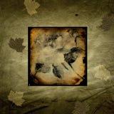 Gebranntes Reispapier mit fallenden Blättern Lizenzfreie Stockfotografie