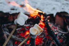 Gebratene Eibische auf einem Feuer im Winterwald stockfotos