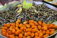 Gebratene Fischbälle mit Sardelle Stockbild