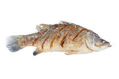 Gebratene Fische der weißen Stange Stockfotos