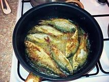 Gebratene Fische in einer Bratpfanne Stockfoto