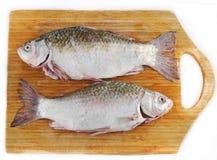 Gebratene Fische mit Gurken, Tomaten und Kräutern Lizenzfreies Stockfoto