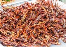 Gebratene Heuschrecken verkauft an den Straßenmarkt Stockfotos