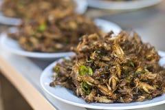 Gebratene Insekten lizenzfreies stockfoto