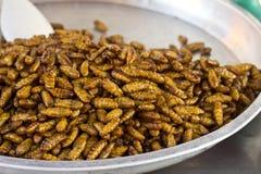 Gebratene Insekten Lizenzfreie Stockfotografie