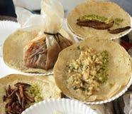 Gebratene Insektentacos, mexikanische Küche Stockfotos