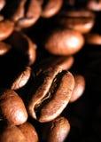 Gebratene Körner des Kaffees stockbilder