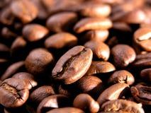 gebratene Körner des Kaffees stockfoto