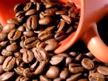 Gebratene Körner des Kaffees und des Cup stockbild