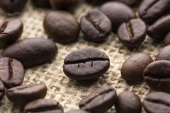 Gebratene Kaffeebohne stockfoto