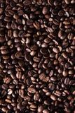 Gebratene Kaffeebohne lizenzfreie stockfotos
